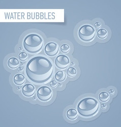 Bubbles for drink vector image vector image
