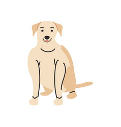 Cute pet dog on white background vector