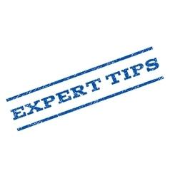 Expert Tips Watermark Stamp vector image