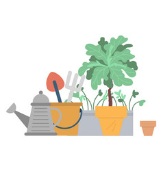 Flower growing in pot watering can and pots vector