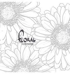 Gerbera drawn in pencil vector