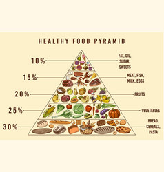 healthy food plan pyramid infographics vector image