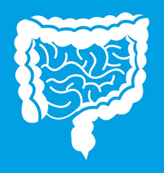 Intestines icon white vector