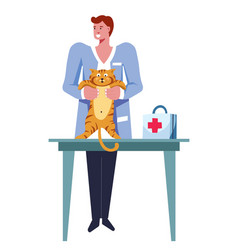 veterinarian male examining cat pet on table vector image