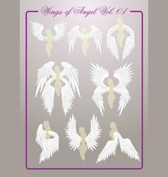 wings of angel vol01 vector image
