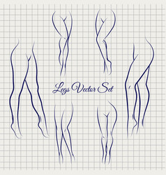 sexual woman legs sketch collection vector image