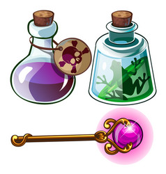 toxic poison frog in bottle and wizards gold wand vector image vector image