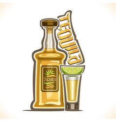 Alcohol drink tequila vector