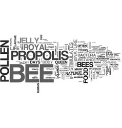 bee supplements for your health text word cloud vector image