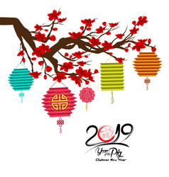 big traditional chinese lanterns and cherry vector image