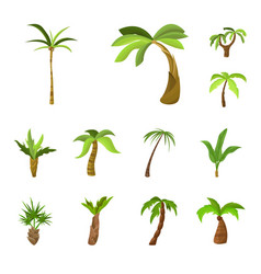 design tree and beach logo collection vector image