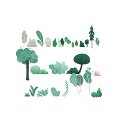 fantasy forest set with vector image