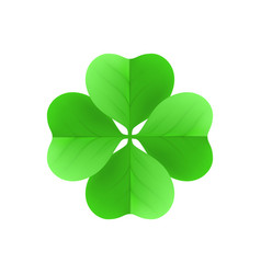 Irish shamrock lucky plant isolated white vector
