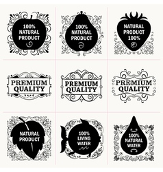 Natural products and frames collection vector