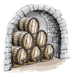 Watercolor wine cellar with barrels vector