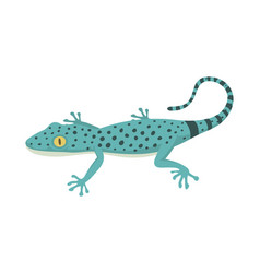 blue lizard reptile isolated vector image