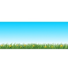 Green grass seamless background vector image vector image