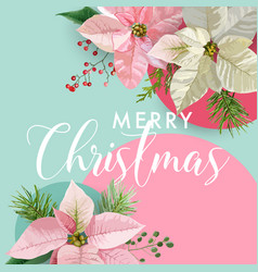 Christmas winter poinsettia flower banner vector