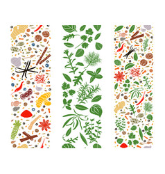 Cooking flat herbs and spices organised in three vector