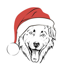 dog in santa hat vector image