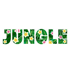 Jungle logo to print t-shirts palm leaves and exo vector