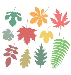 Leaf icon autumn vector