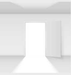 open door with light on white background vector image