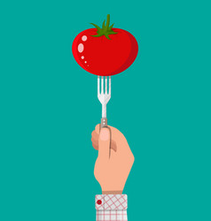 tomato vegetable on fork in hand vector image vector image