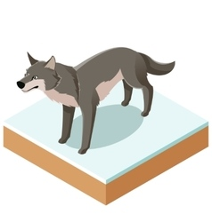 Isometric wolf icon with a square ground vector image vector image