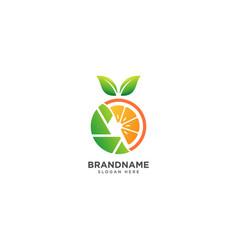 Camera logo design with fruit and leaf vector