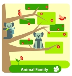 Family of koalas on a eucalyptus tree with birds vector image