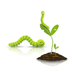 Green tea worm and small tree with soil vector