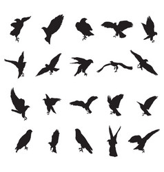 Set of eagle silhouettes-2 vector