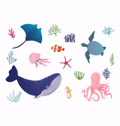 set with hand drawn sea life elements vector image