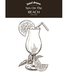 sex on the beach composition vector image