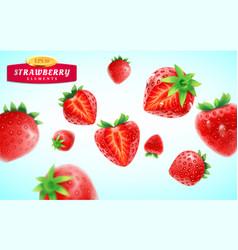 strawberry set detailed realistic ripe fresh vector image