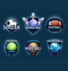 sports balls labels and sport team emblems vector image vector image