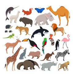 big set with wild cute animals isolate on vector image vector image