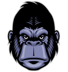 gorilla head mascot vector image vector image