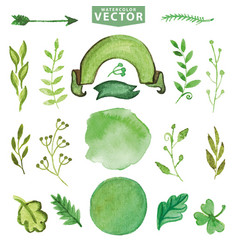 watercolor green decor branches floralpetal set vector image vector image