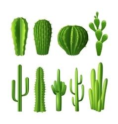 Cactus Realistic Set vector image