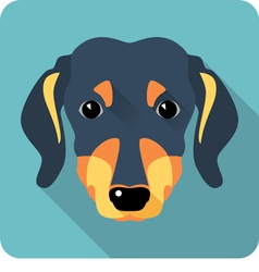 dog dachshund icon flat design vector image