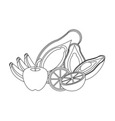 fruits and vegetables in black and white vector image