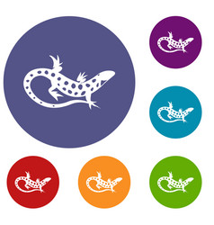 lizard icons set vector image
