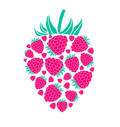 Raspberry isolated on white background vector