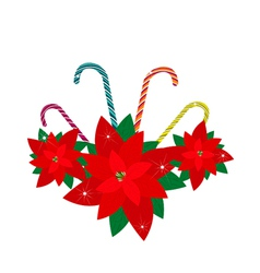 Red Poinsettia Flowers with Lovely Candy Canes vector image