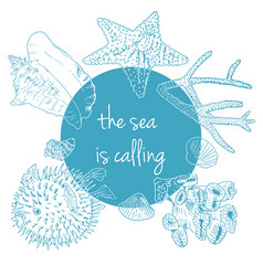 sea is calling marine background with seashells vector image