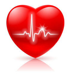 Shiny red heart with cardiogram isolated on white vector
