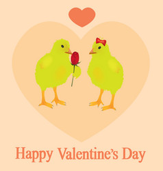 two chickens in love vector image