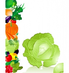 vegetables cabbage vector image vector image